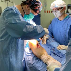Reconstrucción-articular-de-la-tibia-proximal